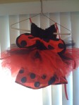 Ladybug with a TuTu- backside