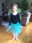 Blue and green tutu and wings